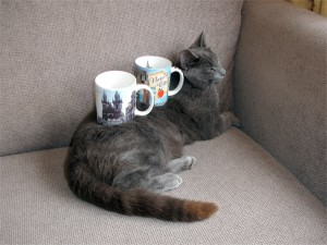 Double cat cup holder