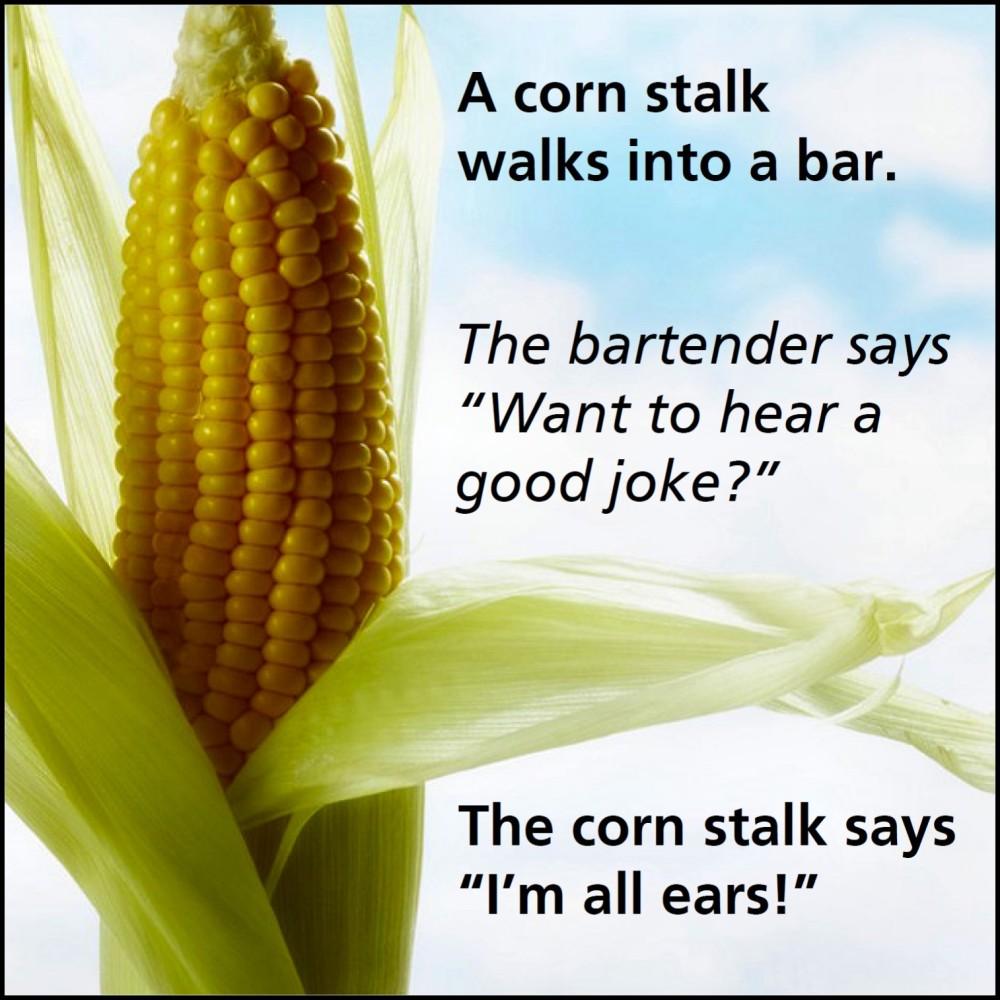A man walks into a bar…
