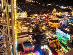 Goose Fair view